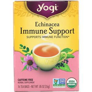 エキナセア –免疫サポート