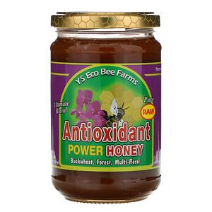 ЙС Эко Би Фармс, Antioxidant Power Honey, 13.5 oz (383 g) отзывы покупателей