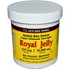 Y.S. Eco Bee Farms, Royal Jelly, 20.3 oz (576 g)
