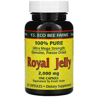 Y.S. Eco Bee Farms, Gelée royale, 2 000 mg, 35 comprimés