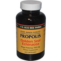 Y.S. Eco Bee Farms, Propolis, Golden Seal Echinacea, 60 Capsules