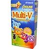 Yum-V's, Multi·V + Multi-Mineral Formula, Milk Chocolate Flavor, 60 Bears